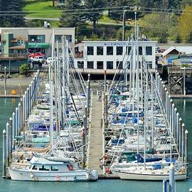 Melinda Baugh - Seward Alaska Small Boat Harbor 2