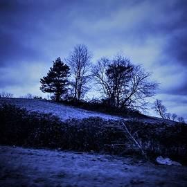 Debra Lynch - Shades of Blue