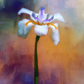 Carolyn Marshall - Shades of Iris