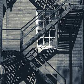 Colleen Kammerer - Shadowed Escape