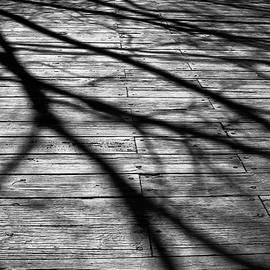 Colleen Kammerer - Shadows on the Bridge