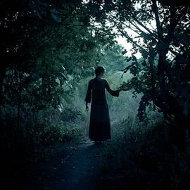 Shadowy path - Wojciech Zwolinski