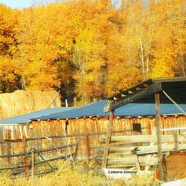 Lenore Senior - Sheds in Autumn