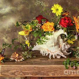 Jon Wild - Shell, flowers and Butterflies