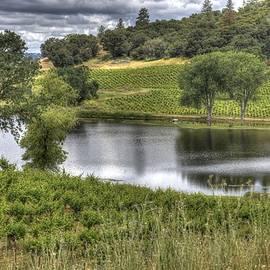 Thomas Todd - Shenandoah Valley WIne Country