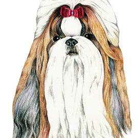 Kathleen Sepulveda - Shih Tzu, Gold and White