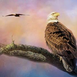 Jai Johnson - Shiloh Eagles In Spring