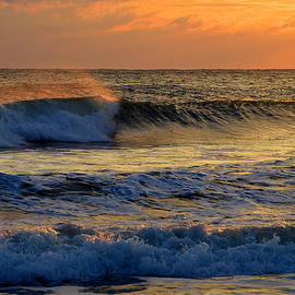 Dianne Cowen - Shimmering Ocean View