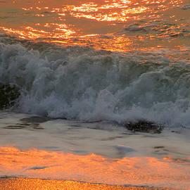 Dianne Cowen - Shimmering Sea