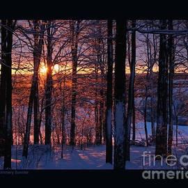 Patricia Overmoyer - Shimmery Sunrise