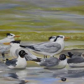 Phyllis Beiser - Shorebird Group
