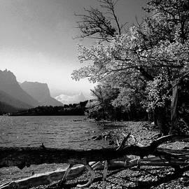 Tracey Vivar - Shoreline Black and White
