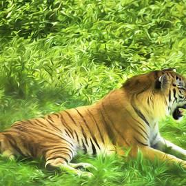 Daphne Sampson - Siberian Tiger Beauty