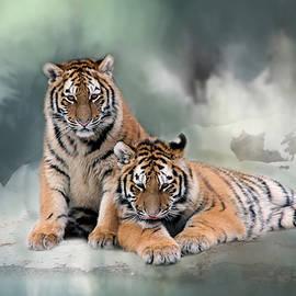 Inge Riis McDonald - Siberian Twins