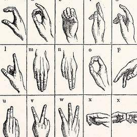 Sign Language Alphabet - Unknown