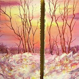 Carolyn Rosenberger - Silent As Light
