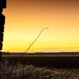 Jukka Heinovirta - Silhouette Of Dry Hay In The Sunset
