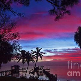 Davids Digits - Silhouette Sunrise