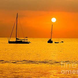Michael Cinnamond - Silhouette Sunset