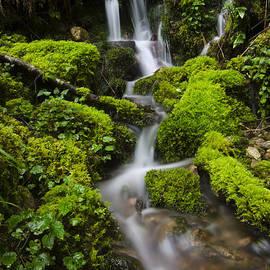 Bob Christopher - Simple Beauty Oregon 2