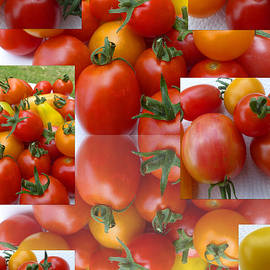 Tina M Wenger - Simple Tomatoes