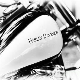 Simply Harley - Tim Gainey