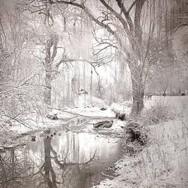 Tara Turner - Skaha Park in Winter