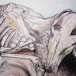 MaryEllen Frazee - Skeleton