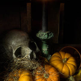 Ann Garrett - Skull and Pumpkins