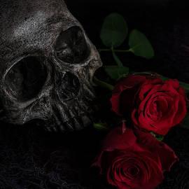 Ann Garrett - Skull and Red Roses