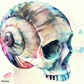 Bunny Clarke - Skull Fantasies