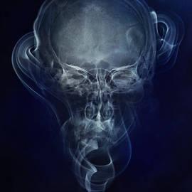 Jaroslaw Blaminsky - Skulls and smokes - blue version