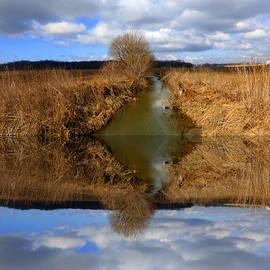 Tina M Wenger - Sky And Creek Reflected