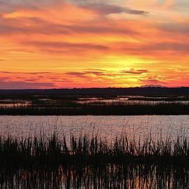 Cynthia Guinn - Sky Over The Marsh