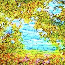 Joel Bruce Wallach - Sky Through The Trees