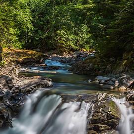 Calazones Flics - Skykomish River