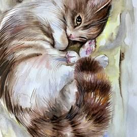 Katerina Kovatcheva - Sleepy cat 2