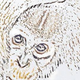Catherine Lott - SLoppy Monkey Paint