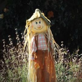 Kathy Franklin - Smiling Scarecrow
