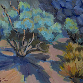 Smoke Tree in La Quinta Cove - Diane McClary