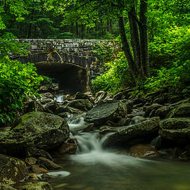Eric Albright - Smoky Mountain Bridge