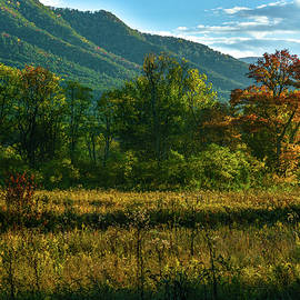 Eric Albright - Smoky Mountain view