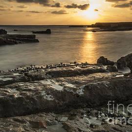 Arik Baltinester - Snails at sunset