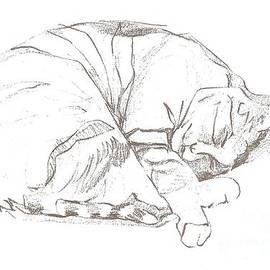 Denise Fulmer - Snoozing Kitty