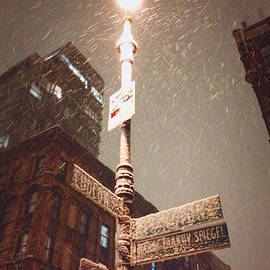 Vivienne Gucwa - Snow Covered Signs - New York City