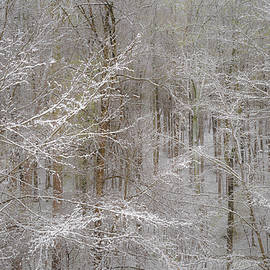 Joseph Smith - Snow Days