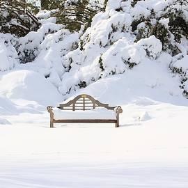 Karen Silvestri - Snow Dwarfed Bench