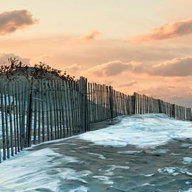 Robin-Lee Vieira - Snow Fence