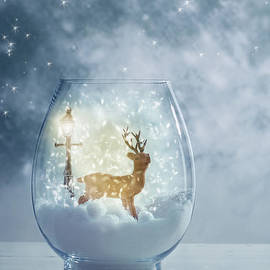 Snow Globe For Christmas With Reindeer - Amanda And Christopher Elwell