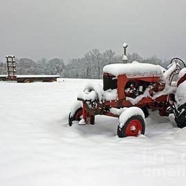 Steve  Gass - Snow Harvest